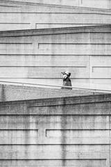 Going Up (kwphotos.com) Tags: woman walker ramp cocrete tier blackandwhite bw monochrome black white