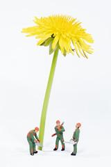 Der Sonnenblumenbaum wird gefällt (marco.federmann) Tags: h0 h0figuren figuren sonnenblume arbeiter