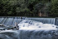 Limmat (Guy Goetzinger) Tags: river water nikon d850 limmat baden cascade wasserfall