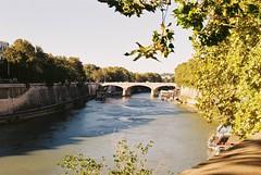 River Tiber (goodfella2459) Tags: nikonf4 afnikkor24mmf28dlens fujifilmc200 35mm c41 film analog colour river italy roma tiberriver rome trees