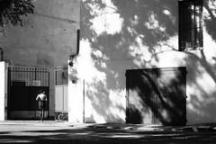 (Stella Trasforini) Tags: streetphotography blackandwhite shadow ricohgrii
