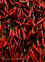 Red Hot Chillies (Holfo) Tags: maderia funchal nikon d7500 chillies food hot red redhot vegetables