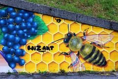 Wiz and Moscato di Scanzo - Detail 1: bee (Wiz Art) Tags: wiz writing writer wizboy wall wizart wallart wizartgraffiti artwork animal art aerosolart streetstyle streetartist spray sprayart sprayartist streetart street spraypaint scanzorosciate detail decoration flickrgraffiti graffiti futurism festadelmoscato graffitism graff graffitiart graffitiartist legality hardcore halloffame photography clash kobra loopcolors colors montana moscatodiscanzo italy ironlak urban urbanart underground murales mtn94 bergamo eventi belton nbq nature