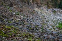 La segunda colada (SantiMB.Photos) Tags: 2blog 2tumblr 2ig santjoandelesfonts garrotxa girona invierno winter basalto basalt boscarró rocas rocks geo:lat=4221394413 geo:lon=250952800 geotagged santjoanlesfonts cataluna españa