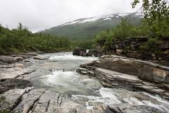 Abisko nationalpark (Alenius) Tags: abisko sverige sweden nature natur norrland lappland lapponia fjäll fjällen