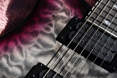 Let there be music (_wintermute) Tags: electric guitar prs se pickup tamron 28200 xr guitardetails seymourduncan markholcomese