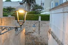 evening (Hayashina) Tags: sardegna evening lamp alghero italy sundaylights