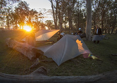 ideal campsite (gnarlydog) Tags: australia camping sunset flare warmlight goldenhour contrejour backlit bush rural countryside yamaha xsr700 xsr900 outdoors adventure
