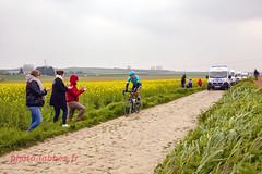 Un des derniers coureurs du Paris Roubaix sur les pavés (louis.labbez) Tags: saintpython nord france parisroubaix pavé course race cyclisme cycliste coureur chemin route cycle colza champs culture countryside campagne applaudissement spectateur