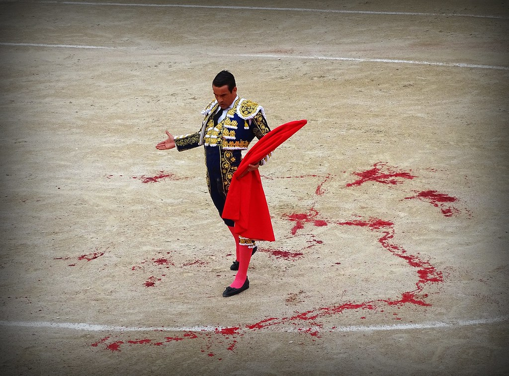 The World's Best Photos of bullfight and toros - Flickr Hive Mind