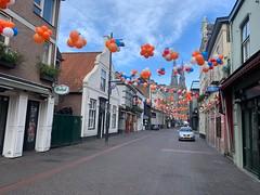 koningsdag 2019 ballonnen decoratie