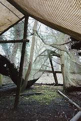 Lair in the Woods (JamieDieu) Tags: nikon fa 400 35mm f25 ultramax series e