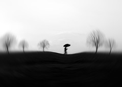 """Life is a mystery that must be lived, and not a problem to solve. """" (Fan.D & Dav.C Photgraphy) Tags: horizon over land dawn fog moody sky dramatic copse michelstadt field black white alone walking silhouette sidewalk mystery life lifestyle silence blackandwhite bnwmystery bnwperfection"""