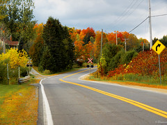 An autumn road. (Lise1011) Tags: autumn landscape nature line outdoor rural sign orange easterntownship crossing trees route color road beautiful green forest yellow town trip canada america quebec sky crossroad