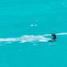 201904 Turks and Caicos-06839.jpg