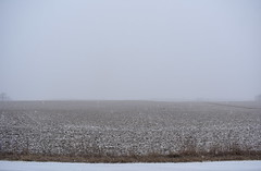 Winter Strikes Again (Pictures by Ann) Tags: springsnow snow flurries road field