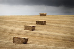 The storm is coming ... (Domikawa4) Tags: straw hay storm orage paille foin champ field nuage cloud gris grey paysage clouds nuages nature landscape landscapes champs agriculture paisaje naturaleza