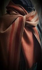 Twill scarf (Sweet Annie Woods) Tags: