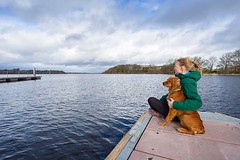 Spectacular views in Coosan Point on Lough Ree during our visit to #irelandshiddenheartlands. Watson thoroughly enjoyed all the swimming sessions in the water and staring at the ducks! I think it's his new favourite hobby... • • • • • #loughree #irishpass (watson_the_adventure_dog) Tags: spectacular views coosan point lough ree during our visit irelandshiddenheartlands watson thoroughly enjoyed all swimming sessions water staring ducks i think it's his new favourite hobby • loughree irishpassion exploremore destinationearth welivetoexplore coosanpoint backcountrypaws irish keepitwild tuesday roamtheplanet petsofinstagram photooftheday loveireland theoutbound discoverglobe instagoodmyphoto doglover boatwithdogs instaireland getoutstayout earthofficial ilovemydog discoverireland visitireland stayandwander theglobewanderer earthfocus dogsofig