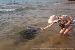 IMG_7619.jpg (Dhammika Heenpella / CWSSIP Images of Sri Lanka) Tags: dhammikaheenpella traveldestination feeding ශ්රීලංකාවේචායාරූප ධම්මිකහීන්පැල්ල placeofinterest turtle ශ්රීලංකාව imagesofsrilanka srilanka placesofinterest ශ්රීලංකාවේෆොටෝ hikkaduwabeach