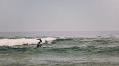 Surfing (enilkcals) Tags: big waves olas sea mar ocean pacific totoralillo surf surfing