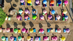 Umbrella festival @Ayodya Palace (SjPhotoworld) Tags: indonesia bali nusadua ayodya palace resort beach explore flickr flickrelite beautiful umbrella dji drone mavicair droneview sky color challenge flight