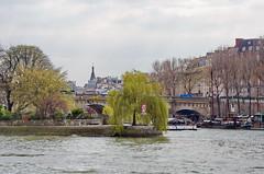 437 Paris en Mars 2019 - la Seine, le saule pleureur au bout de l'Île de la Cité, le Pont Neuf (paspog) Tags: paris france mars march märz 2019 seine îledelacité saulepleureur