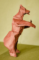 Grizzly Bear (frasermacmillen) Tags: bear grizzlybear origami quentintrollip biotope