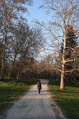 La strada giusta - The right path. (sinetempore) Tags: lastradagiusta therightpath street donna woman ragazza girl parco park parcodellapellerina alberi trees sentiero torino turin