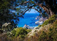Big Sur Coast No.3 (CDay DaytimeStudios w /1 Million views) Tags: ca california highway1 ocean landscape bigsur mountains water coastline hills pacificcoasthighway pacificcoast bluesky