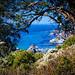 Big Sur Coast No.3