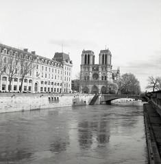 La Cathédrale Notre-Dame de Paris (Rolleiflex 3,5. Ilford FP4+) (Templar1307) Tags: notredame cathedral paris iledefrance france seine river rolleiflex ilford mediumformat fp4 analog