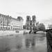 La Cathédrale Notre-Dame de Paris (Rolleiflex 3,5. Ilford FP4+)
