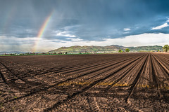 Vale, Oregon (paccode) Tags: solemn d850 colorful landscape rows oregon clouds crops hills serious farm quiet mountain rainbow field vale unitedstatesofamerica