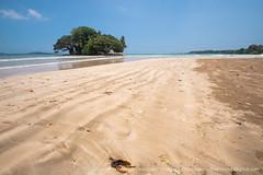 IMG_7544.jpg (Dhammika Heenpella / CWSSIP Images of Sri Lanka) Tags: dhammikaheenpella traveldestination placesofinterest ශ්රීලංකාවේචායාරූප ධම්මිකහීන්පැල්ල ශ්රීලංකාව weligamabeach මුහුදුවෙරළ imagesofsrilanka srilanka වැලිගම ශ්රීලංකාවේෆොටෝ taprobaneisland landmark taprobane island