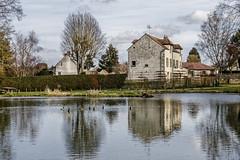Reflets sur la mare (Lucille-bs) Tags: europe france iledefrance valdoise vexin théméricourt architecture mare reflet arbre canards maison