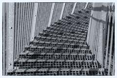 11 Tiger and Turtles (Ratzemaus) Tags: ruhrgebiet architektur deutschland duisburg monochrom schwarz weis treppe stairs