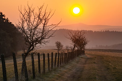 the difference (Woewwesch) Tags: sunrise spring morning outdoor walk early beautiful colors golden hills eifel germany walking sun clear