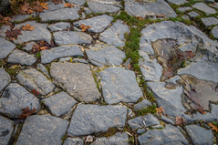 Encajadas (SantiMB.Photos) Tags: 2blog 2tumblr 2ig santjoandelesfonts garrotxa girona invierno winter basalto basalt boscarró rocas rocks geo:lat=4221395043 geo:lon=250974300 geotagged santjoanlesfonts cataluna españa