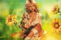 This life (✰✰Nubyia Photography✰✰) Tags: argrace bauhausmovement summer flowers colors dog jian secondlife sl avatar nubyia