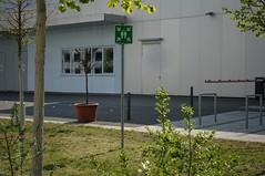 Baum, bei der Fluchtübung. Technikum Kfz-Technik, Hochschule für Technik und Wirtschaft Dresden, Rabenerstraße, Dresden-Südvorstadt (@unescortedminor) Tags: dresden südvorstadt htw