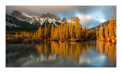 Policeman's Creek (Mark McLeod Photography) Tags: 2018 alberta autumn banff canada canmore markmcleod markmcleodphotography rockies colour fall forest landscape policemanscreek