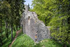 Ruins of Volfštejn Castle (The Adventurous Eye) Tags: černošín plzeňregion czechrepublic castle ruins zřícenina hrad medieval history architecture volfštejn