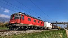 Re 620 035 (Die_Eisenbahn) Tags: sbb sbbcargo sbbc güterzug ferngüterzug re620 re620035 selzach schweiz switzerland zug train