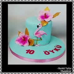 Flamingo Pasta. www.renklitatlar.com (www.renklitatlar.com (05336688680)) Tags: sugarart edibleart butikpastalar butiktasarımpastalar butikpastatasarım butikdoğumgünüpastaları sugarmodelling renklitatlarbutikpasta renklitatlar wwwrenklitatlarcom cakeart cakedesign cakegoals siparişpasta butikpastaistanbul fondant sugarcraft cakes handmade kişiyeözeltasarımpastalar theartofpainting fondantfigures birthdaycake cakedecoration flamingopasta çiçeklipastalar