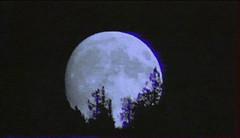 moon (woodcum) Tags: moon night dark vhs glitch animation animated gif gifanimation retro