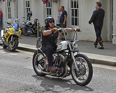 Cruisin Main Street.. (Harleynik Rides Again.) Tags: chopper biker motocyclist harleydavidson calnebikemeet hardtail harleynikridesagain