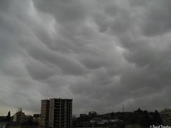Mammatus clouds over Tbilisi 2/12/2018 (David Dondua) Tags: mammtus cloud clouds cumulonimbus convection cumulus congestus tbilisi georgia february 2018 მამმატუს ღრუბელი თბილისი თებერვალი мамматусы вымеобразные облака тбилиси грузия февраль