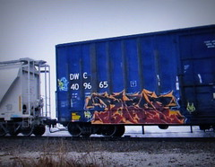 biser (timetomakethepasta) Tags: freight train graffiti art blue dwc boxcar biser aub lsd