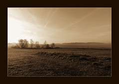 earlies (luci_smid) Tags: sepia impression monochrome